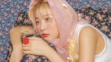 Photo of Seulgi (Red Velvet) Hakkında Bilinmesi Gerekenler